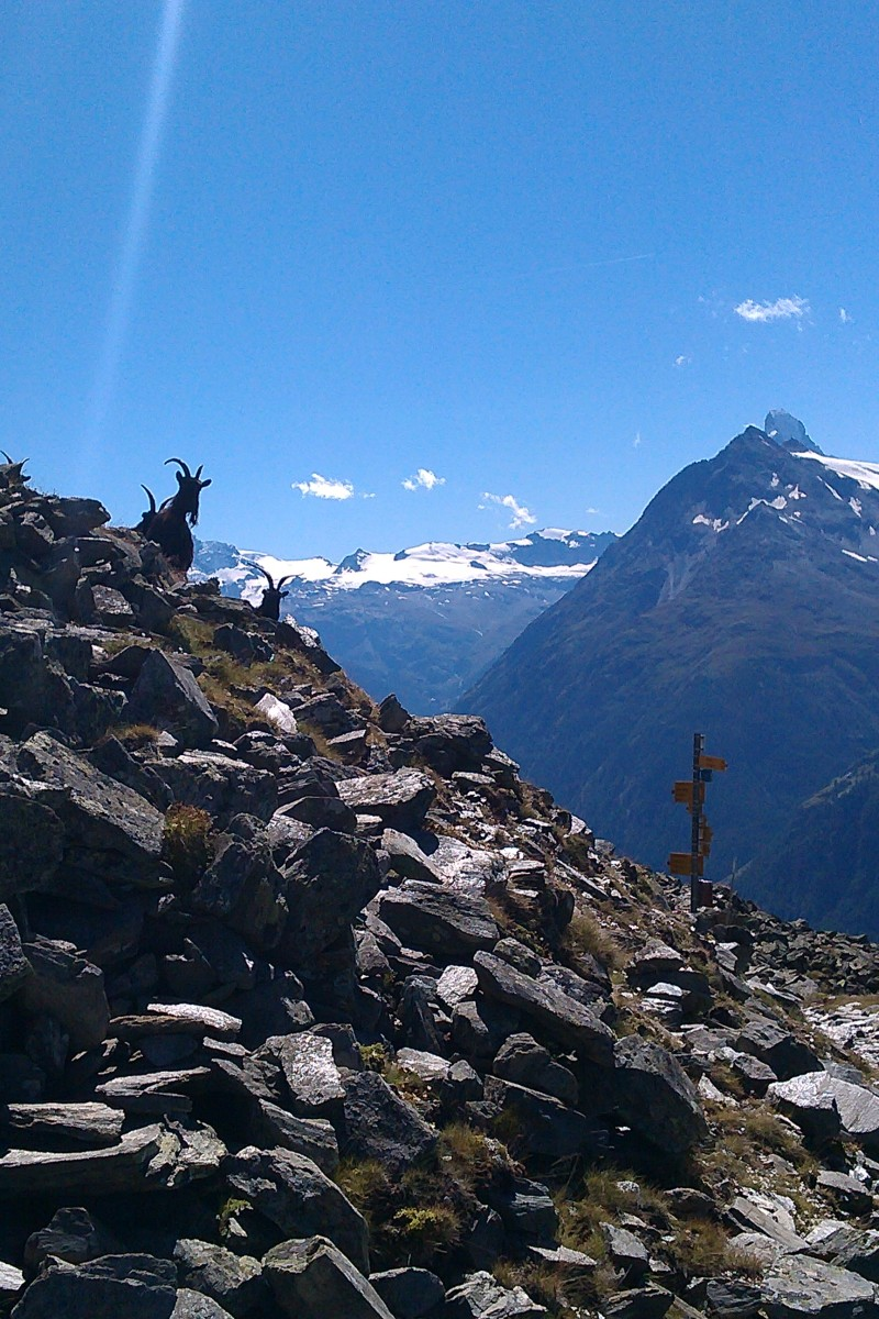 Head in the clouds - walking the Europaweg towards Zermatt & the Matterhorn