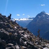 Head in the clouds - walking the Europaweg towards Zermatt & the Matterhorn