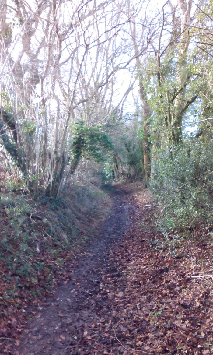 Bridleway near Herberts Hole, Chiltern Link, Chesham
