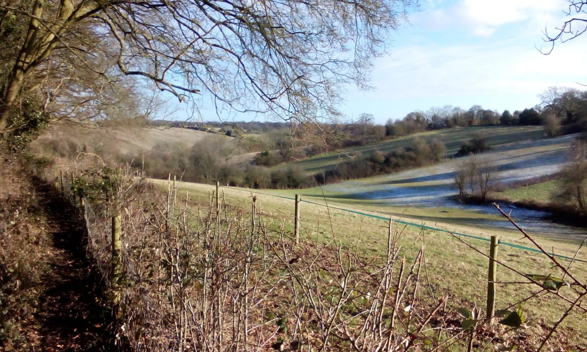 To the Countryside on the London Underground; Walking the Chiltern Hills